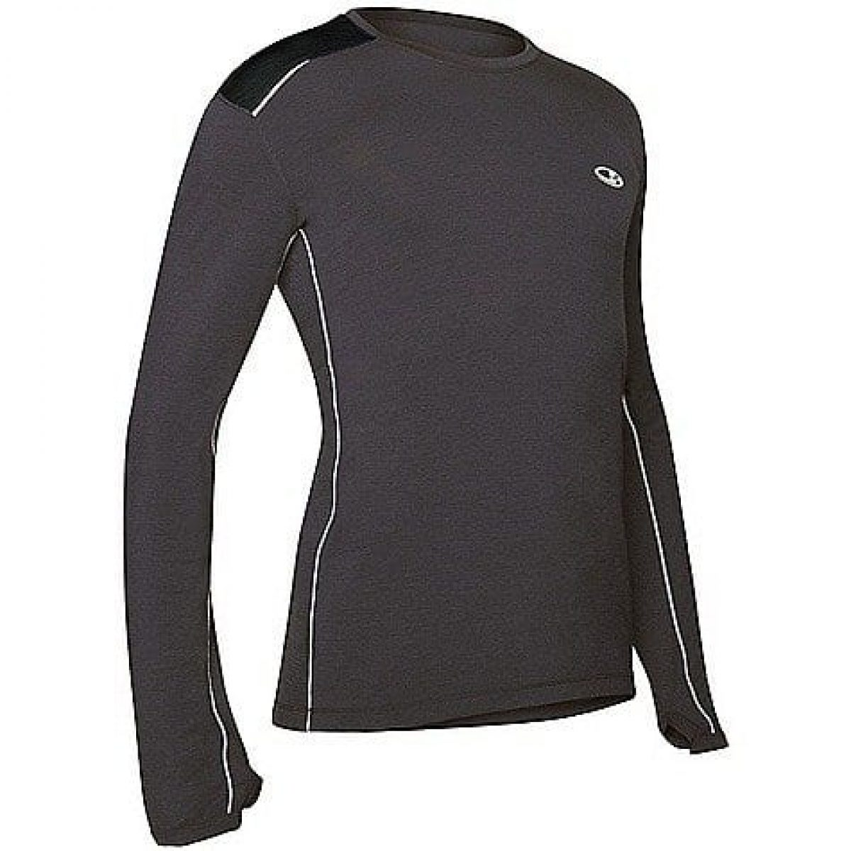 Icebreaker Gt Run Review Active Gear Review